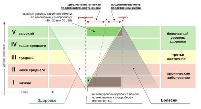 определение уровня здоровья по Апанасенко